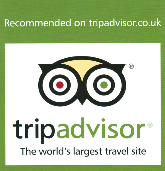 Tripadvisor-recommend